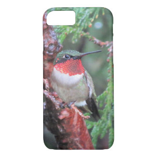 IPhone Case with Hummingbird