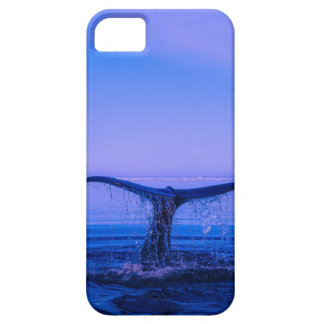 iphone Cover Wale Watching