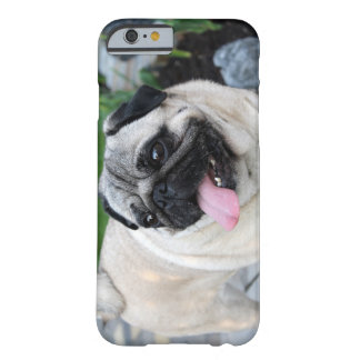 Iphone more cover pug
