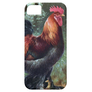iPhone SE + iPhone 5/5S, Barely There - Rooster Case For The iPhone 5