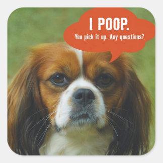 iPoop Spaniel Square Sticker