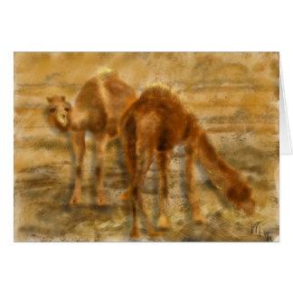 Iran Camels Card