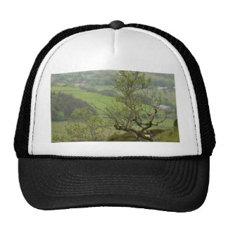 Ireland Bushes Trucker Hats
