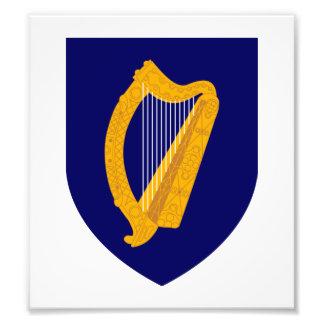 Ireland Coat Of Arms Photographic Print