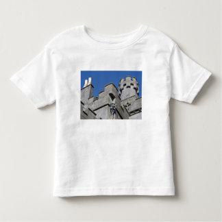 Ireland, County Kilkenny, medieval castle. Toddler T-Shirt