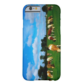 Ireland, Herd Of Cattle Grazing Barely There iPhone 6 Case