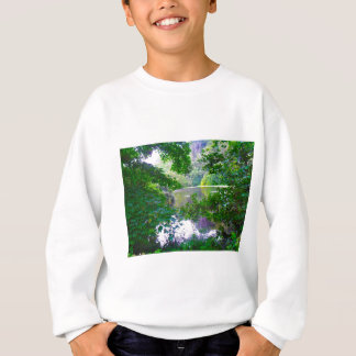Ireland Mystery Sweatshirt