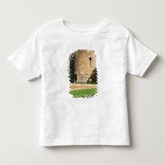 Ireland, Roscommon. View of Roscommon Castle. Toddler T-Shirt