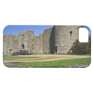Ireland, Roscommon. View of ruins of Roscommon Case For The iPhone 5