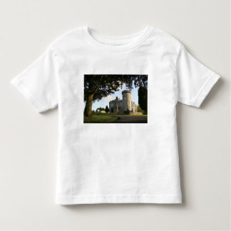Ireland, the Dromoland Castle side entrance. Toddler T-Shirt