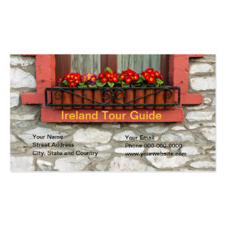 Ireland Tour Guide Business Card