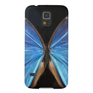 Iridescent Blue Butterfly Wings Galaxy S5 Covers