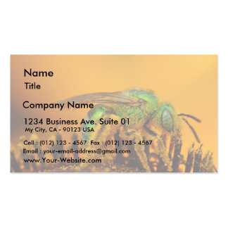 Iridescent Green Sweat Bees Pack Of Standard Business Cards