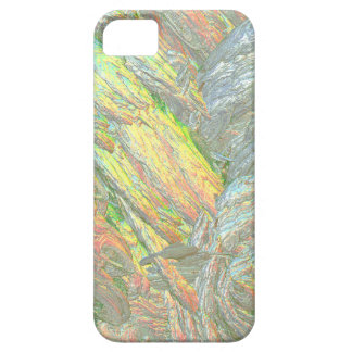 Iridescent Shell colours iPhone 5 Case