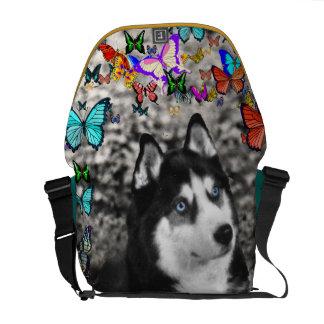 Irie the Siberian Husky in Butterflies Courier Bag