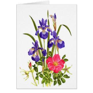 Iris and Beach Rose Card