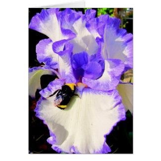 Iris and Bee Card