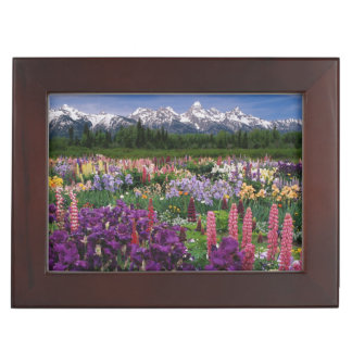 Iris and Lupine garden and Teton Range, Keepsake Box
