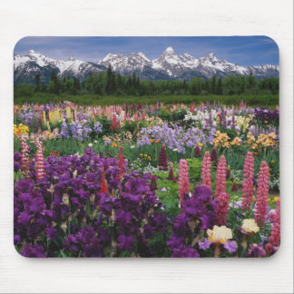 Iris and Lupine garden and Teton Range, Mouse Pad