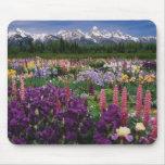 Iris and Lupine garden and Teton Range, Mousemats