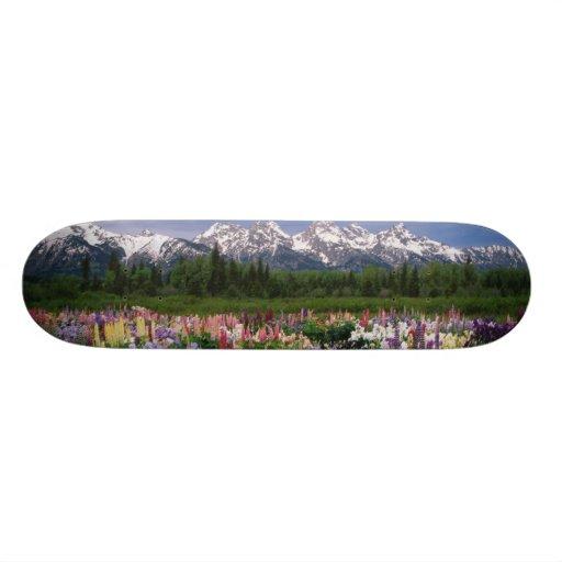 Iris and Lupine garden and Teton Range, Custom Skate Board