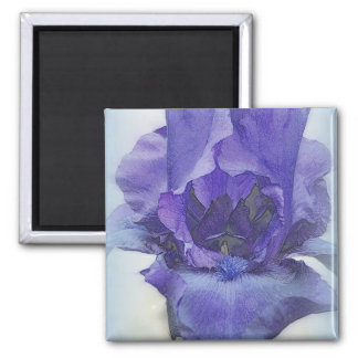 Iris Blues Magnet