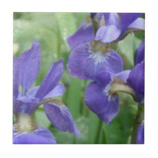 Iris Bulbs  Trivet Small Square Tile