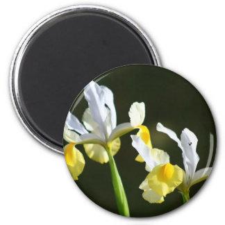Iris Flower 6 Cm Round Magnet