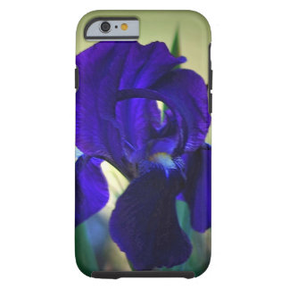Iris flower purple tough iPhone 6 case