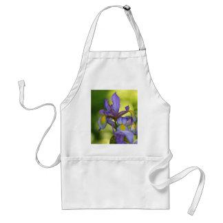 Iris flower standard apron
