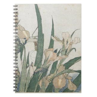 Iris Flowers and Grasshopper, c.1830-31 Note Book