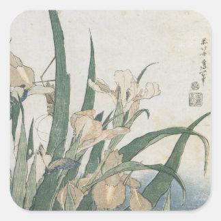 Iris Flowers and Grasshopper, c.1830-31 Square Sticker