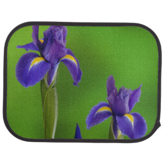 Iris Flowers Car Mat