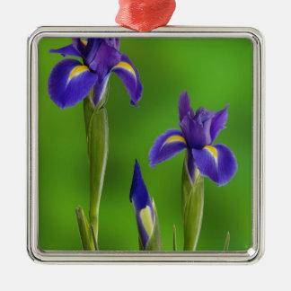 Iris Flowers Christmas Ornament