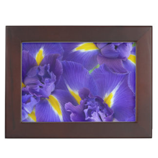 Iris flowers keepsake box