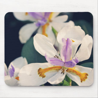 Iris flowers mouse mat