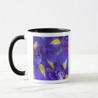 Iris flowers mug