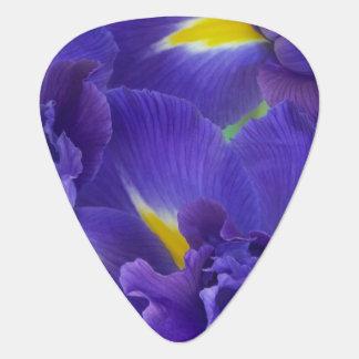 Iris flowers plectrum