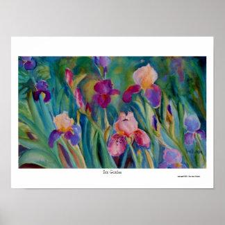 Iris Garden Poster