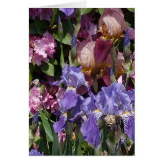 Iris Garden Purple Blue Pink Greeting Card