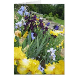 Iris Garden Small Blank Note Card