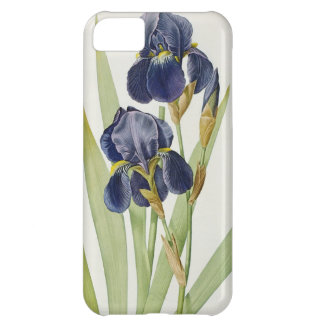 Iris Germanica, from `Les Liliacees', 1805 iPhone 5C Case