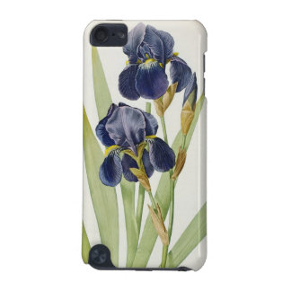 Iris Germanica, from `Les Liliacees', 1805 iPod Touch 5G Case