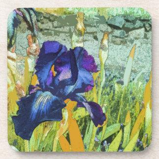 Iris Harmony Coaster