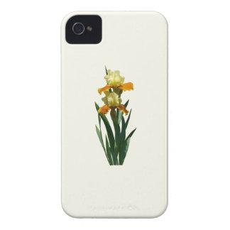 Iris Honey Glazed Case-Mate Blackberry Case