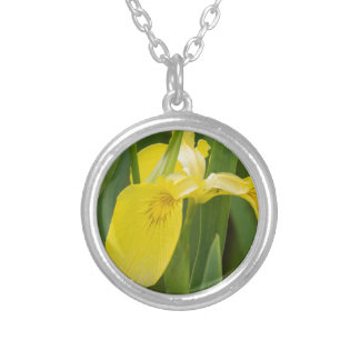 iris in the garden silver plated necklace