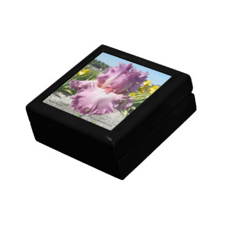 "Iris Jewelry Box / Gift Box - ""Social Graces"""