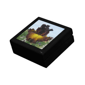 "Iris Jewelry Box / Gift Box - ""TUSCAN SUMMER"""
