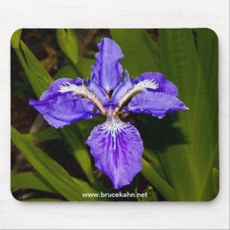 Iris Mouse Mat