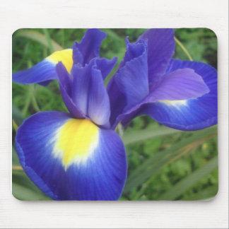 Iris - Mousepad